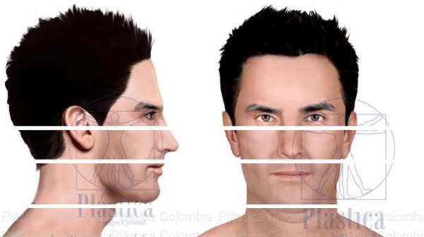 Ilustración Perfilamiento Facial
