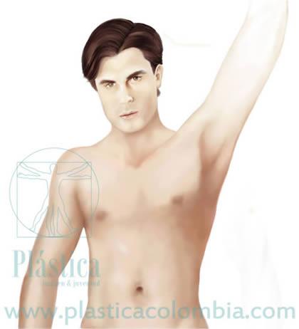 Ilustración pectoral masculino